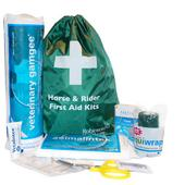 First Aid Essentials, Kit