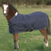 Foal Turnout Rug