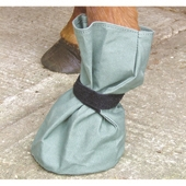 Poultice Boot