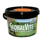 GlobalVite