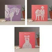 Colour Block Pony Cards (3 Designs)