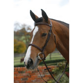 Plain Raised Bridle with Cavesson Noseband