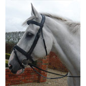 Double Raised Bridle