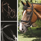 Performance Flash Bridle