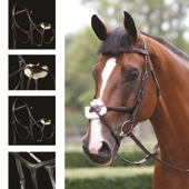 Performance Figure of 8 Bridle