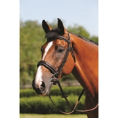 Padded Cavesson Bridle