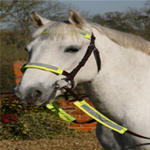 Reflective Bridle Kit